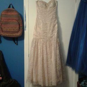Prom/Quincenera/Sweet 16 Dress